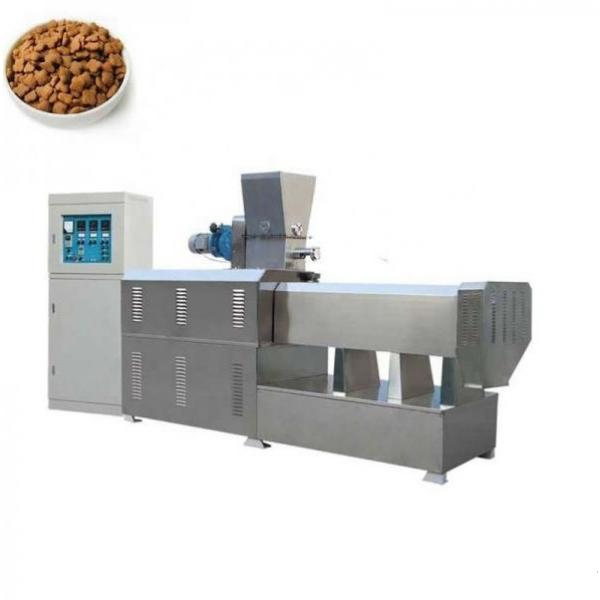 Brewer's Grain Rotary Drying Production Line for Animal Feed
