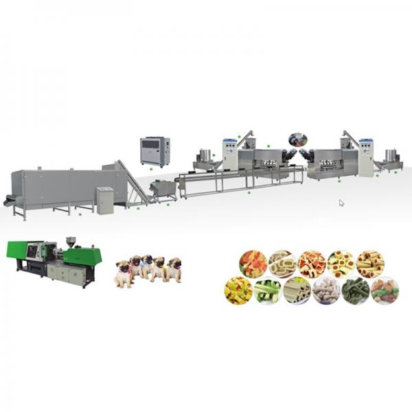 CE SGS ISO dry and wet type pet food dog food treats production line